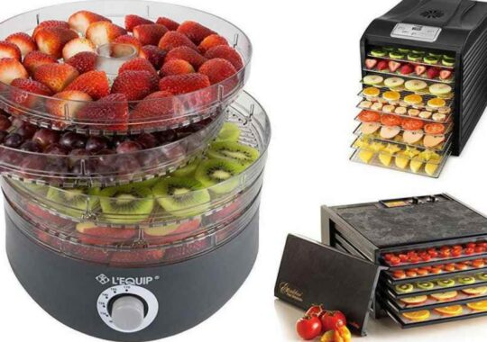 Top 10 Best Food Dehydrators 2021 – Unbiased Reviews & Buying Guide
